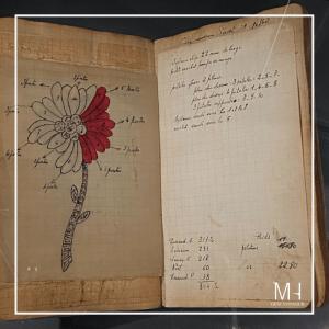 Van Cleef & Arpels Collection sketch book